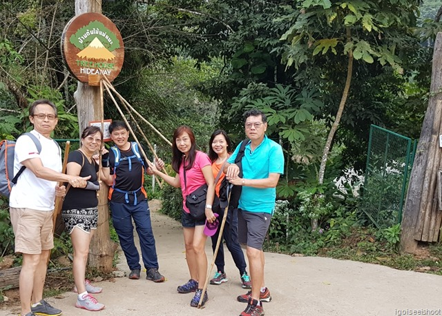 Jungle trekking in Chiang Dao National Park.