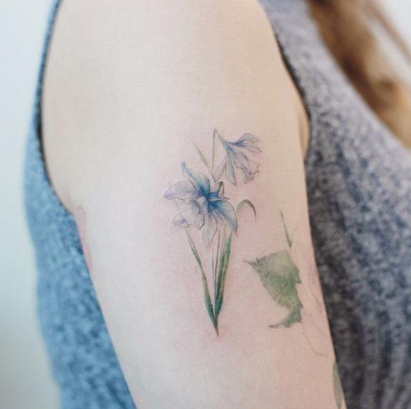 estas_flores_de_narciso