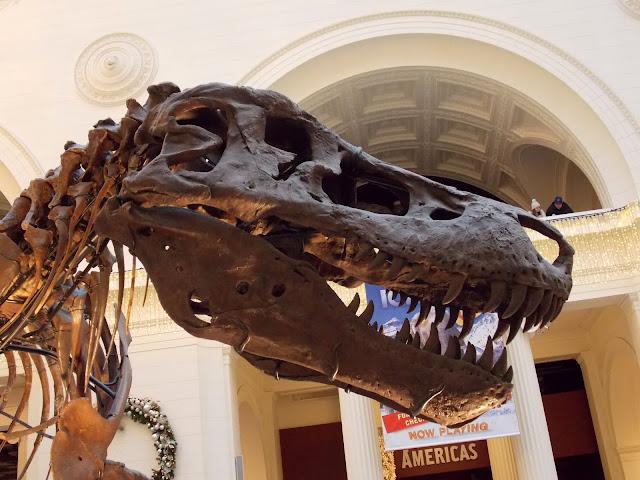 Museum Of Natural History Halifax Volunteer