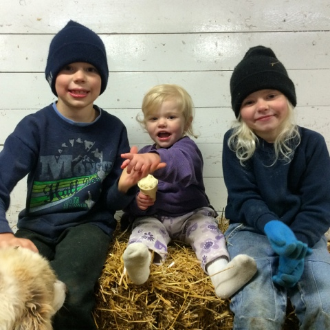 kids on straw bale