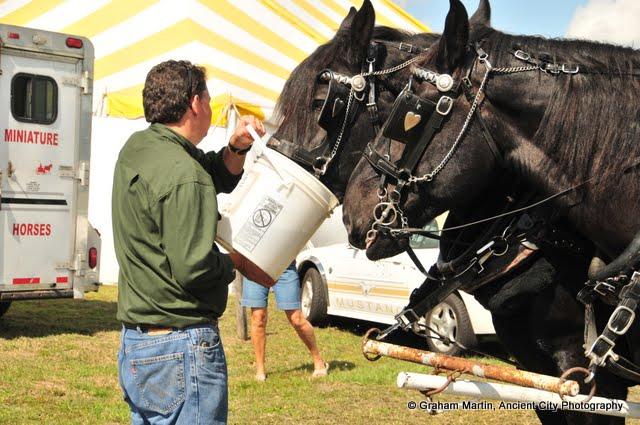 OLGC Harvest Festival - 2011 - GCM_OLGC-%2B2011-Harvest-Festival-60.JPG