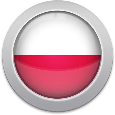 Polish flag icon with a silver frame