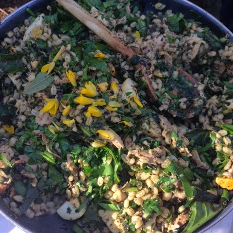 Wild Kedgeree - Foodie Quine - Spring Woodland & Coastal Foraging