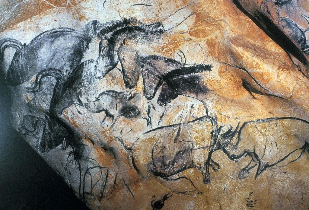 Wall Painting With Horses Rhinoceroses And Aurochs Chauvet Cave