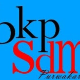 bkpsdmpwk@gmail.com