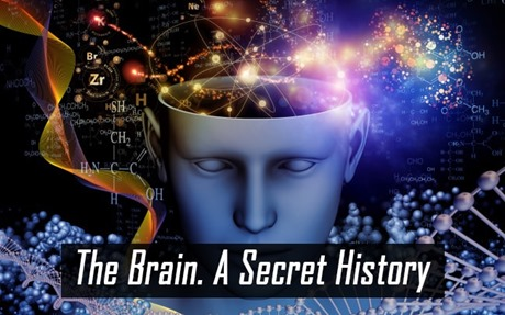 The Brain. A Secret History