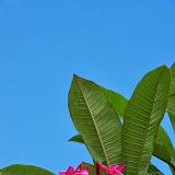 06-27-13 Spouting Horn & Kauai South Shore - IMGP9818.JPG