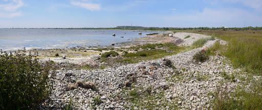 2015-06-13 050_049(Gotland)c.jpg