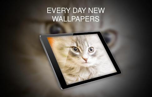Animals Wallpapers for PC-Windows 7,8,10 and Mac apk screenshot 10