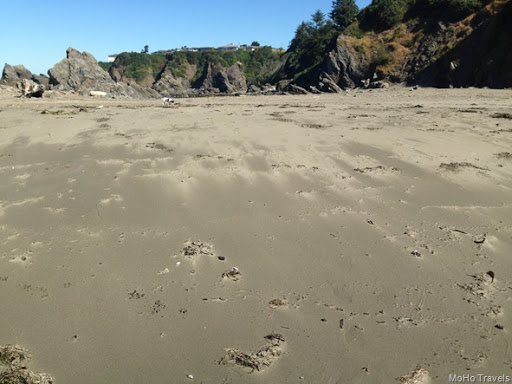 walking at Chetco Point (6 of 40)