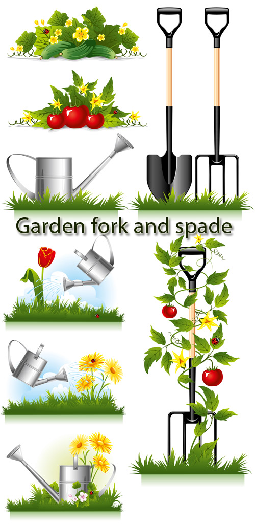Stock: Watering can, shovel and pitchfork for work in a garden