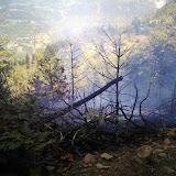 Φωτιά στη Ρόγγια