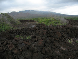 Lava field and old ruins.