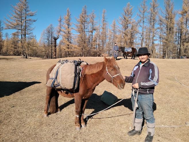 荷物を運んでくれる馬と馬主さん