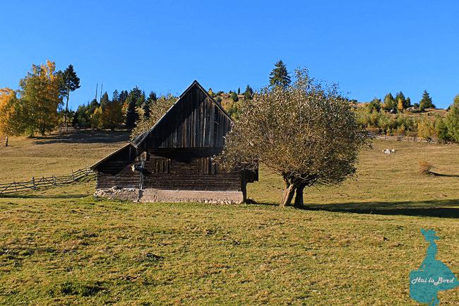 casa fundatica toamna 2015