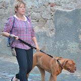 On Tour in Tirschenreuth: 30. Juni 2015 - DSC_0076.JPG