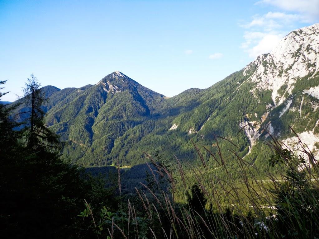 Kamnik–Savinja Alps - Vika-02953.jpg