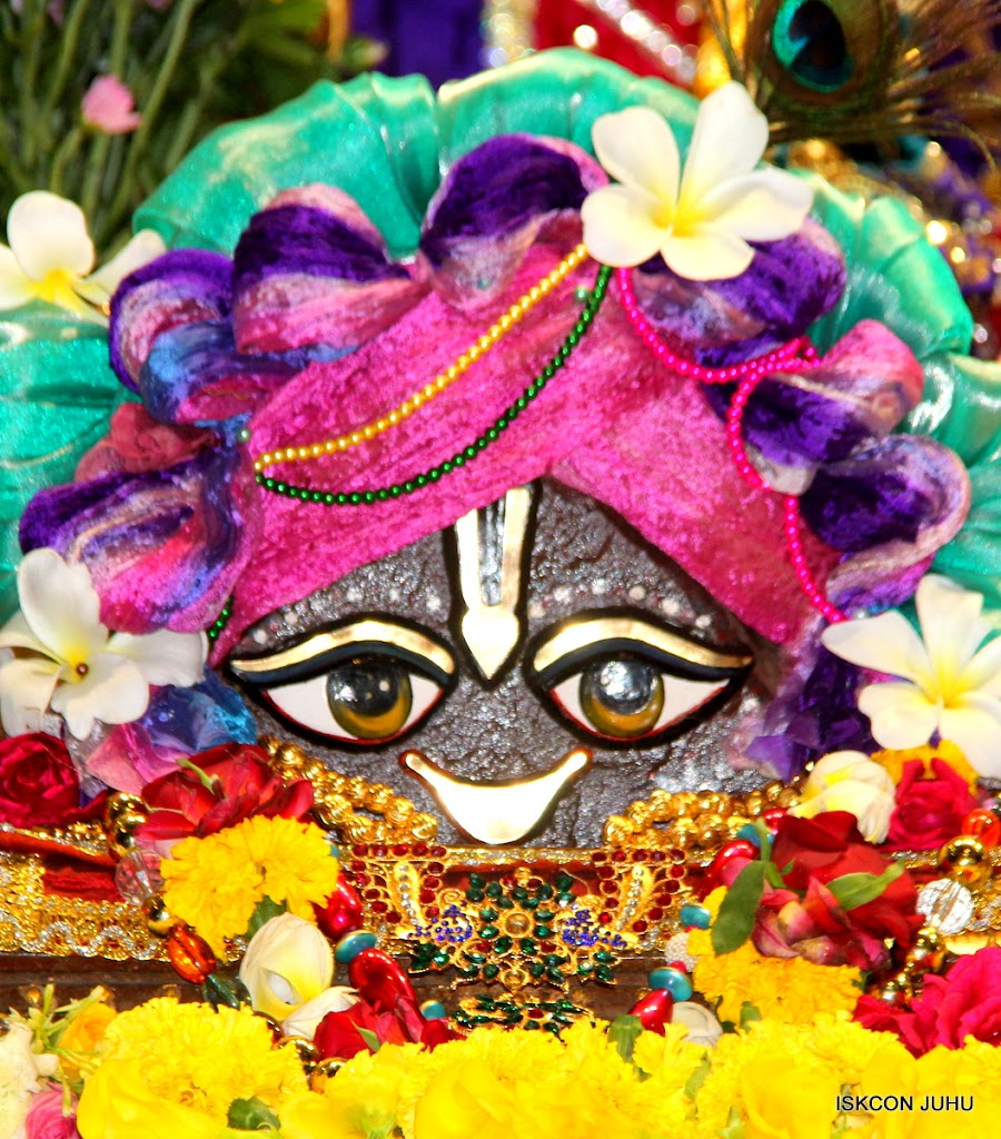 ISKCON Juhu Sringar Deity Darshan on 1st May 2016 (8)