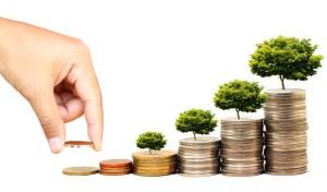Belajar Buat Investasi Bodong