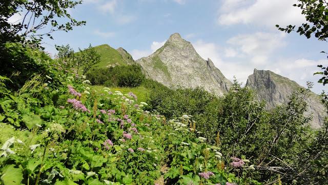 Tour Oberstdorf Oytalhaus Älpelesattel Allgäu - Blick Falkenberg 2.003Meterund Südostgipfel Höfats 2.259 Meter