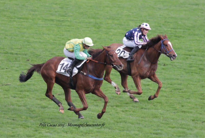 Photos Auteuil 7-11-2015 (48h de l'obstacle) IMG_6460