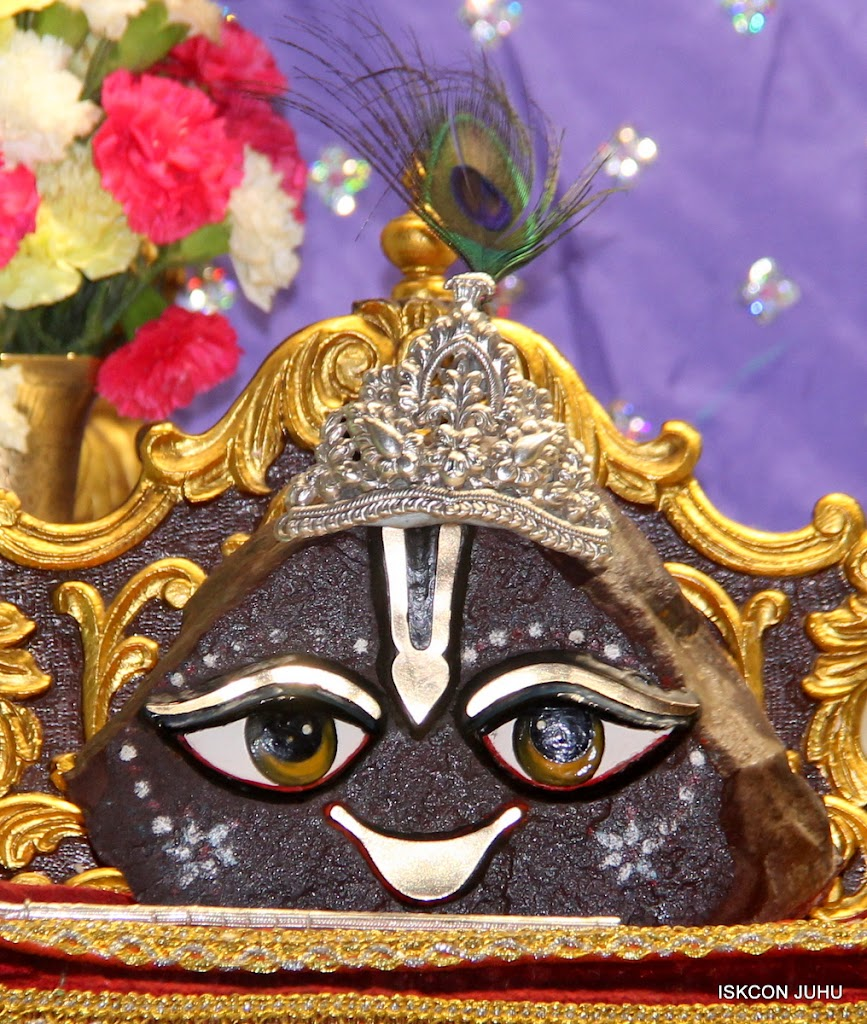 ISKCON Juhu Mangal Deity Darshan on 24th June 2016 (27)
