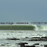 _DSC7877.thumb.jpg