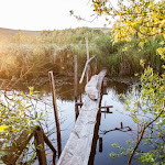 20160611_Fishing_Pryvitiv_039.jpg