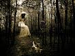 Ghosts Of Romance