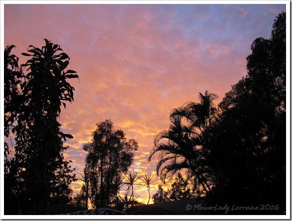 12-30-sunset-2