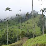 southamerica-2-095.jpg