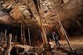 Vertical stals in Drunken Forest Cave | photo © Robbie Shone