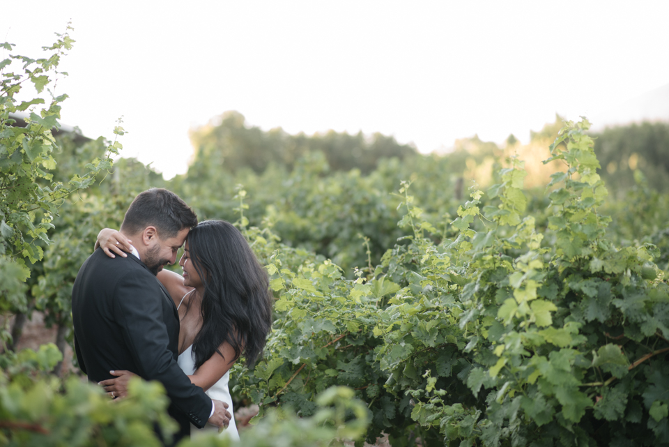 Grace and Alfonso wedding Clouds Estate Stellenbosch South Africa shot by dna photographers 743.jpg