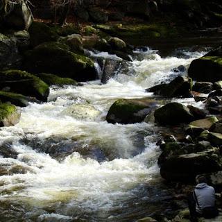 rzeka.jpg