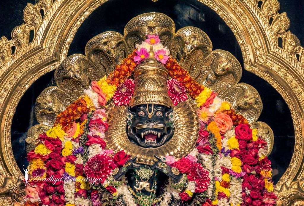 ISKCON Mayapur Deity Darshan 20 Jan 2017 (25)