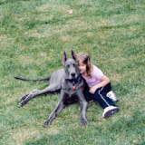 The Dynamite Danes Family! - ava-and-blueside.jpg