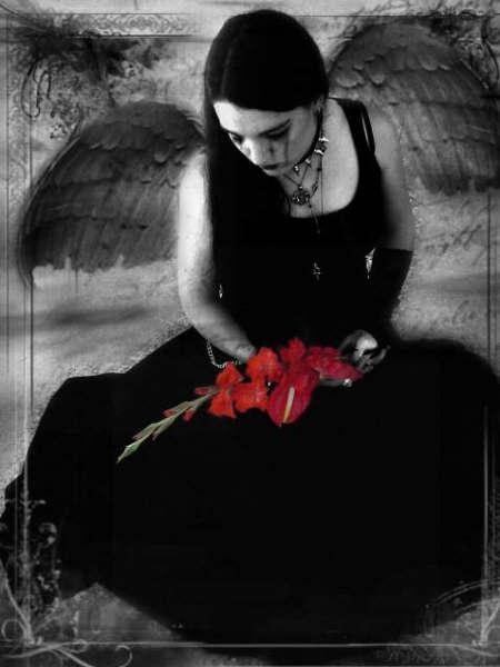 Nature Of Elegant Angel, Angels 5