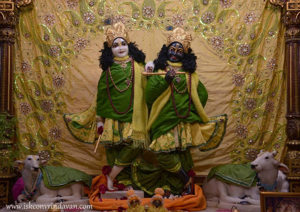 ISKCON Vrindavan Mangal Deity Darshan 29 Jan 2016 (4)