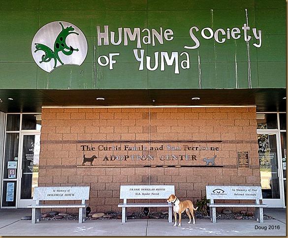 Yuma at his place of adoption