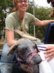 Helping abandoned animals