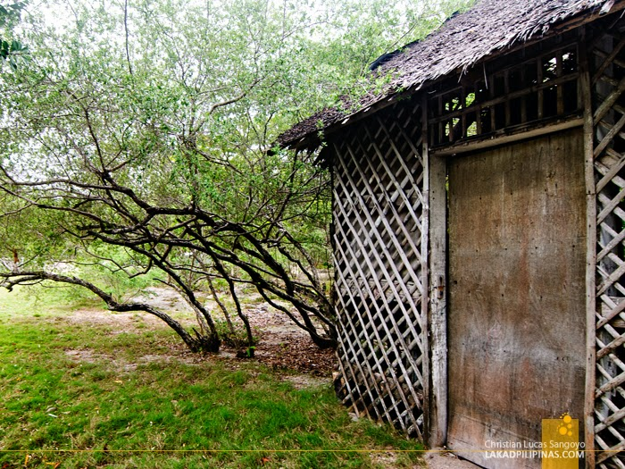 A Shed at Olango Island Wildlife Sanctuary in Cebu