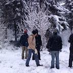 Зимняя уборка в Дендрарии 011.jpg