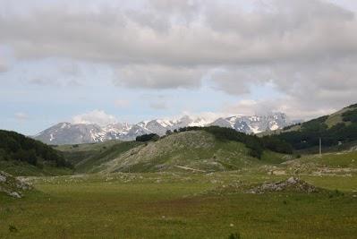 Satte Wiesen vor den schneebedeckten Gipfel des Durmitor