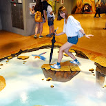 don't fall off at Lotte World in Seoul, Seoul Special City, South Korea