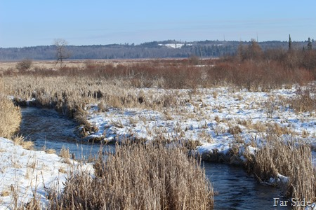 Shell River