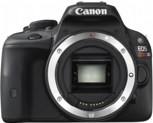 Canon EOS Rebel SL1 at Don's Photo
