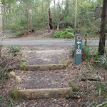 Arrow markers across management trail (54521)