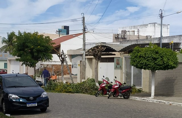Moradora envia resposta a matéria sobre podas de árvores em Santa Cruz do Capibaribe