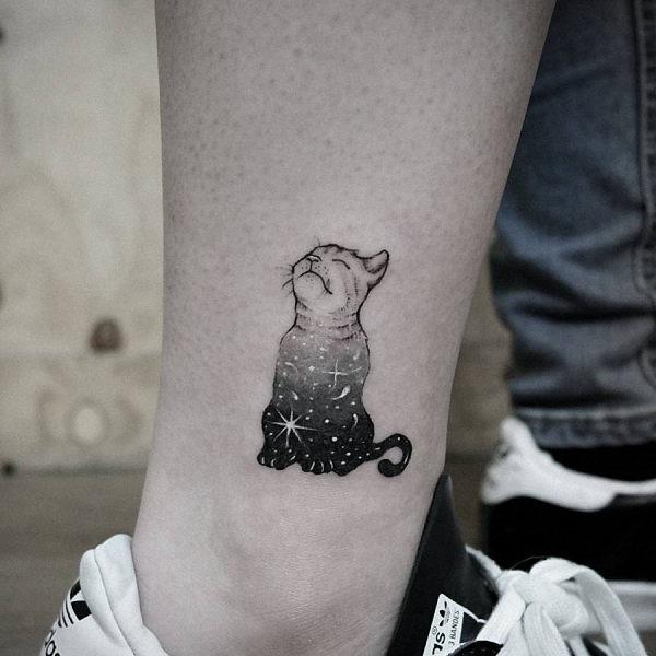 este_encantador_gato