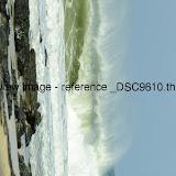_DSC9610.thumb.jpg